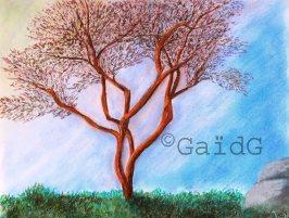 GaidG - Fin d'hiver - Pastel 30x24 cm