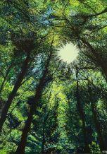 Percée de Lumière - Acrylique sur toile - 70x100 cm